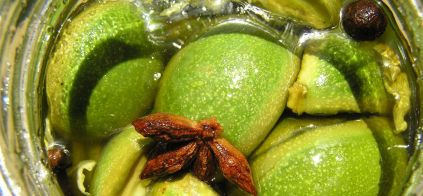 ERDŐKERT Zölddió termékek
